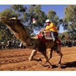 Австралия: десять самых странных спортивных мероприятий 2012 года