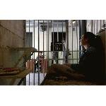 Великобритания: в Лондоне открылась тюрьма-гостиница «Альктрас»