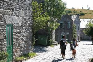 Испания: Пилигримов просят не путешествовать по Камино-де-Сантьяго в одиночестве