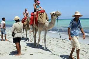Россияне все чаще собираются в Тунис