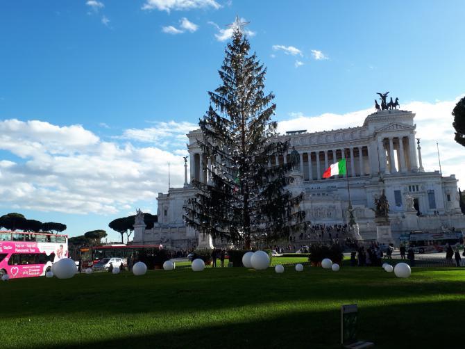 «Облезлая» ель в Риме признана мертвой