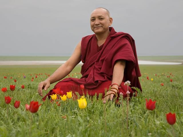 В степях Калмыкии зацвели тюльпаны, Туристам Коломны, фестиваль Путешествие