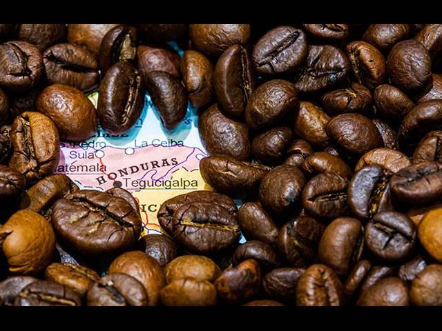 Для любителей кофе создан идеальный туристический маршрут, Туристам Коломны, США стоит ли ехать Россия Испания