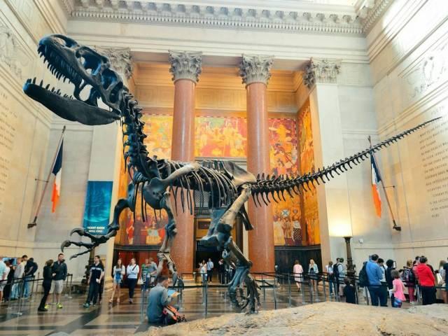 Все музеи США станут бесплатными, Туристам Коломны, турфирмы США Национальный музей музей Америка