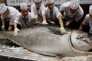 Культовый японский рыбный рынок закрыли по старости