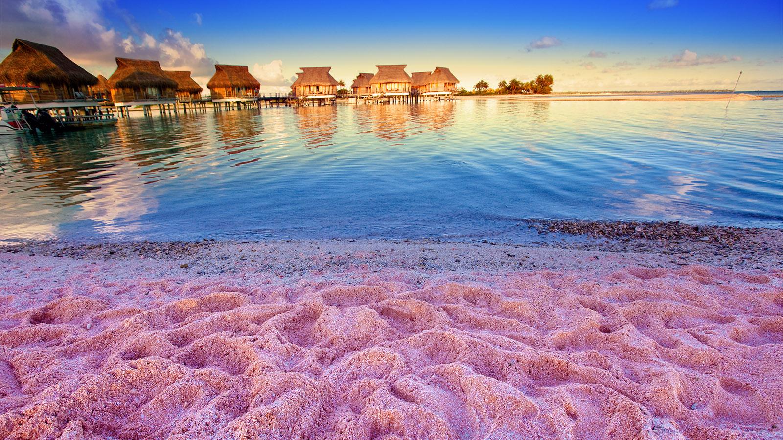 Мэрию раскритиковали после попытки покрасить пляжи флуоресцентной краской, Туристам Коломны, Испания Греция где отдохнуть