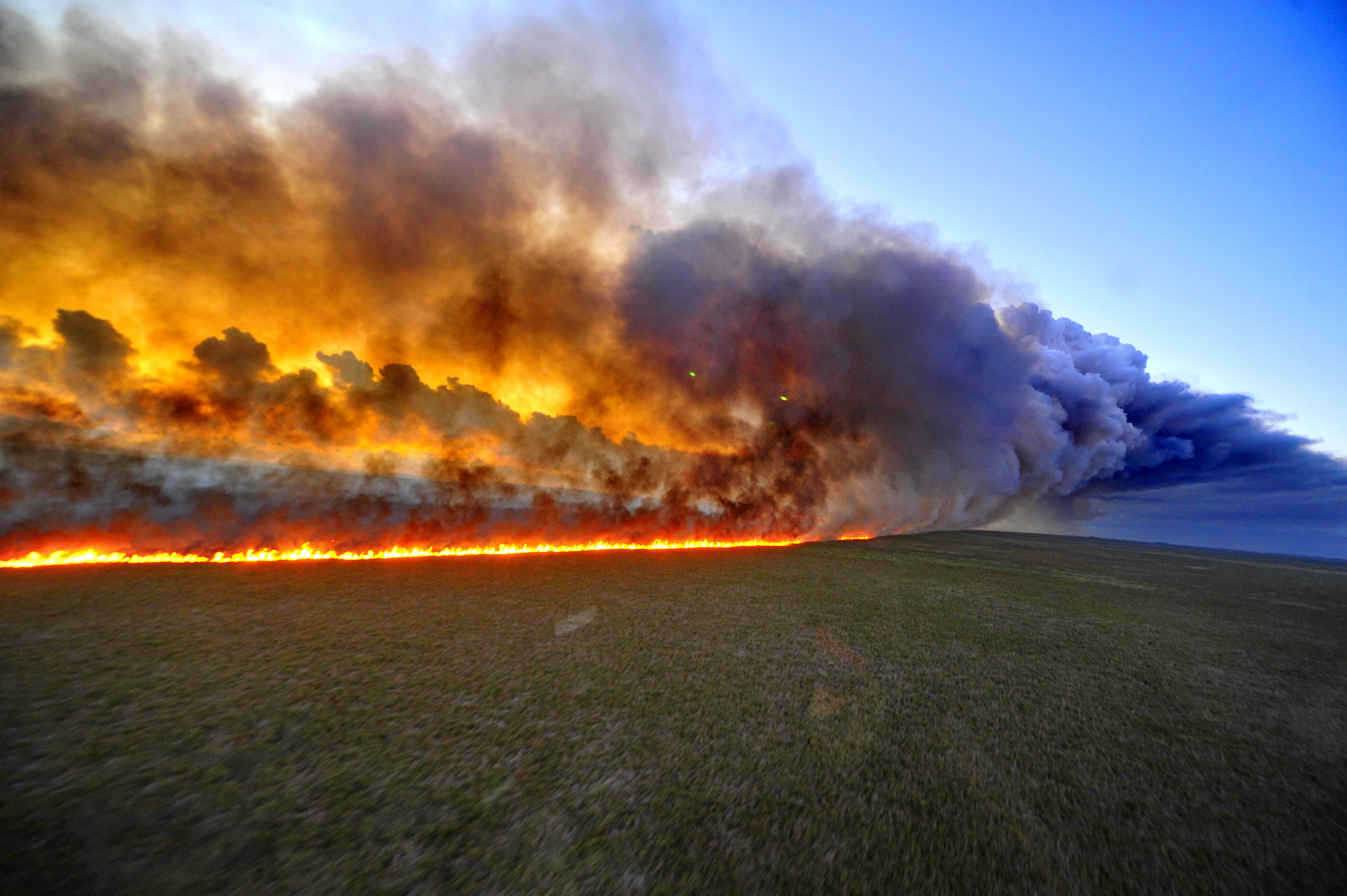 В Бразилии горят леса Амазонки. Насколько все плохо