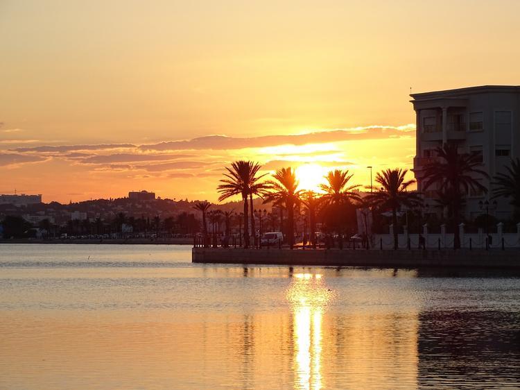 Туроператоры рассказали, стоит ли осенью ожидать снижения цен на курортах Туниса, Туристам Коломны, турфирмы Тунис