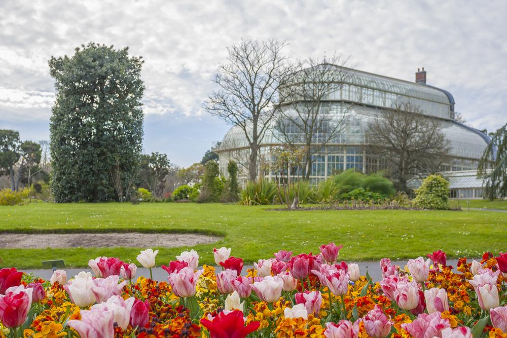 Рейтинг: в каких европейских городах уже расцвели первые майские цветы