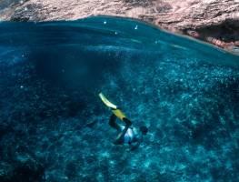 Чем вы на самом деле рискуете, купаясь в море?
