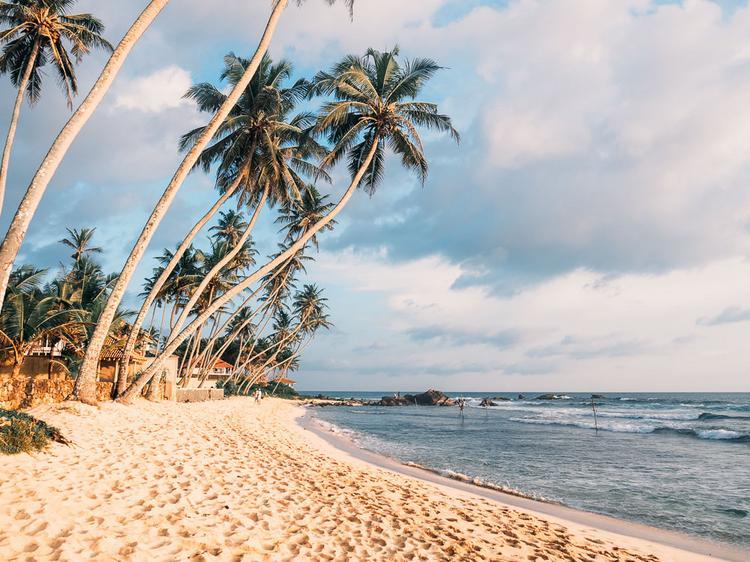 Что нужно сделать и увидеть на Шри-Ланке, если вы ждете от поездки чего-то особенного?