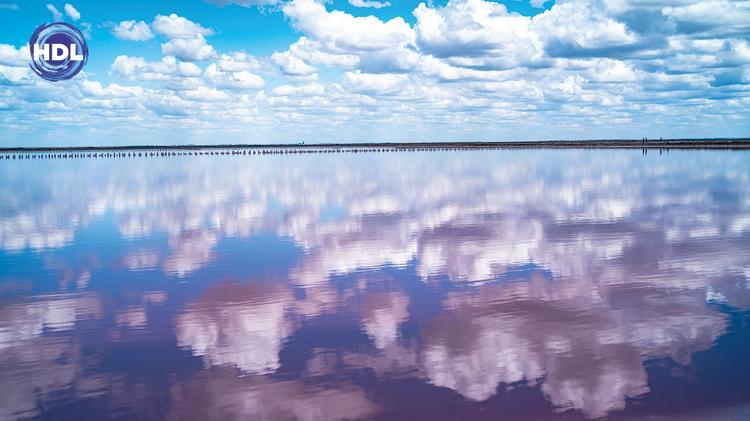 Розовое соленое озеро Сасык-Сиваш