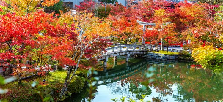 Топ-5 самых красивых пейзажных мест японского Киото осенью