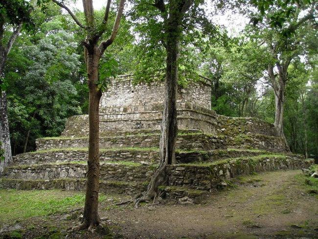 Пирамиды в джунглях (Муйиль)