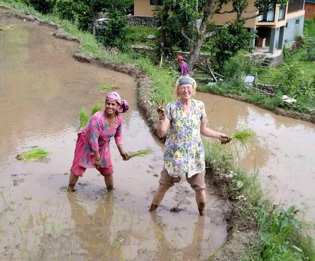 На посадке риса