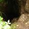 Пещера Аверкиева яма