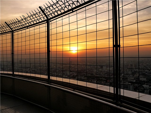 Солнце в клетке)