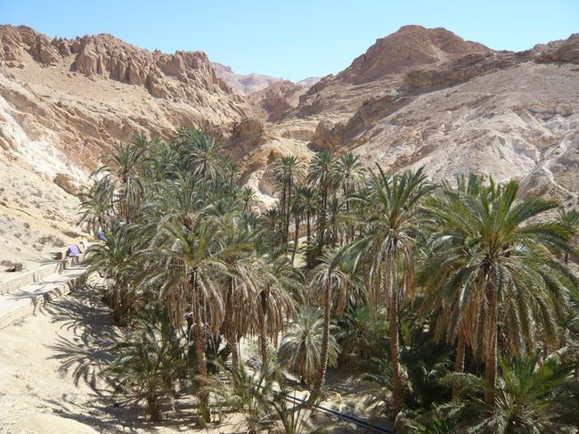 Верхняя часть горного оазиса Шебика