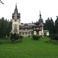 Замок Плеш