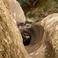 Ущелье Виамала