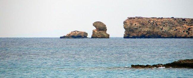 берега