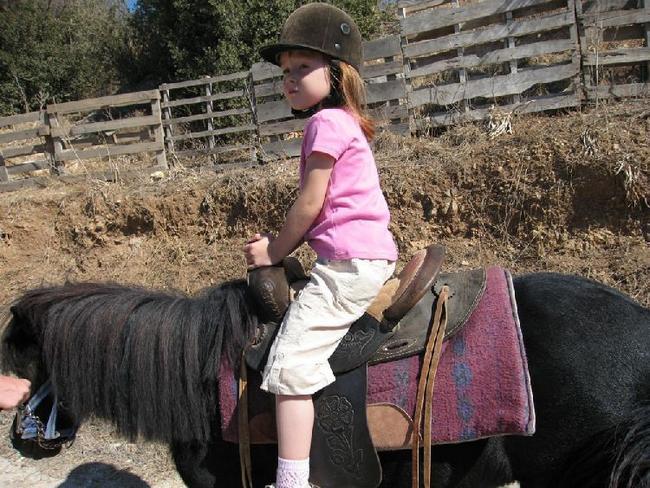 Pony-Hop