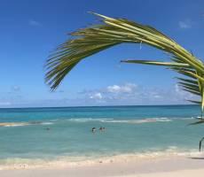 пляж с волнорезами