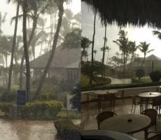 тропический дождт утром