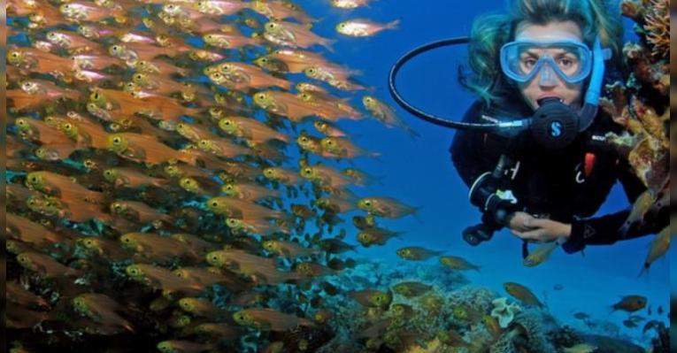 Центр подводного плавания и водных видов спорта Red Sea Waterworld