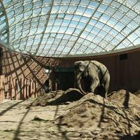 Копенгагенский зоопарк