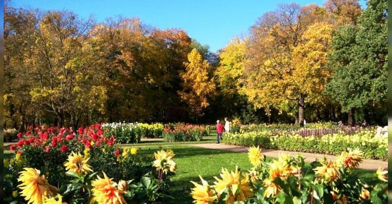 Дрезденский Ботанический сад