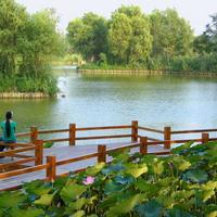 Парк Чаоян