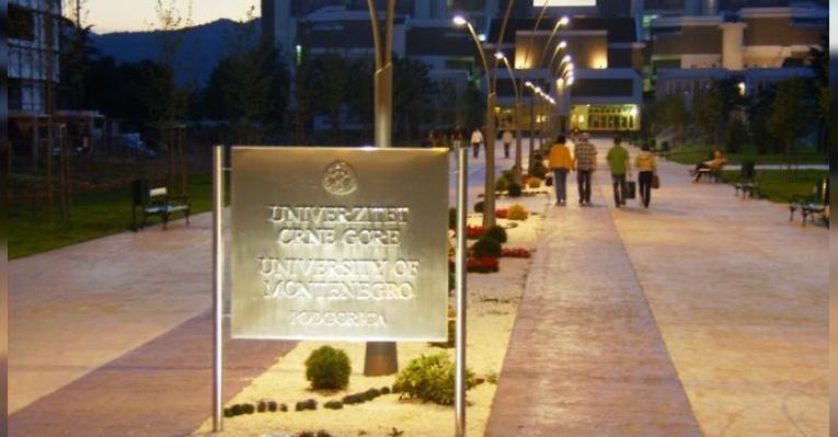 Университет Черногории