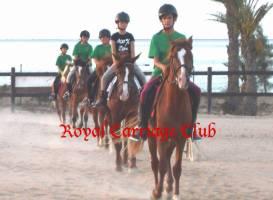 Клуб верховой езды