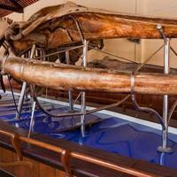 Храм китовых скелетов