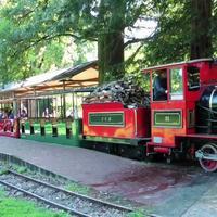 Дворцово-парковая железная дорога