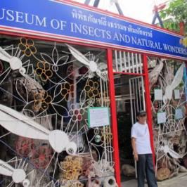 Музей насекомых и чудес природы
