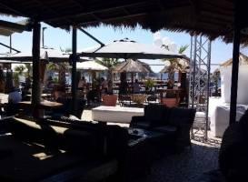 Alaya -coctail bar-