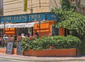 The Plum Tree Bar & Restaurant