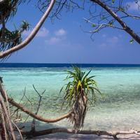 Пляж острова Омаду
