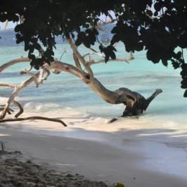 Пляж острова Бьяду