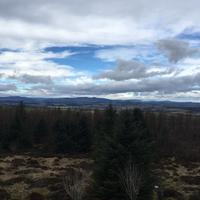 Kirkhill Forest and Tyrebagger Wood
