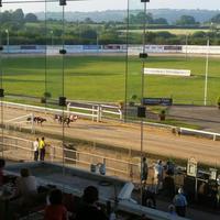 Greyhound Stadium