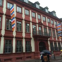 Museum of the Palatinate (Kurpfalzisches Museum)