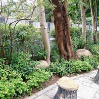 Bird Garden Yuanpu Street