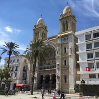 Кафедральный собор Сен-Венсан де Поль