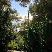 Hanbury Botanic Gardens (Giardini Botanici Hanbury)