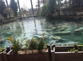 Cleopatra Pools