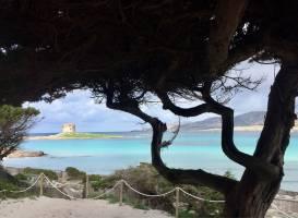 Пляж Ла Пелоза