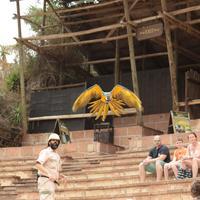 Park Las Aquilas Jungle Park